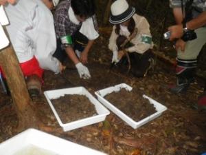 土壌微生物の勉強会